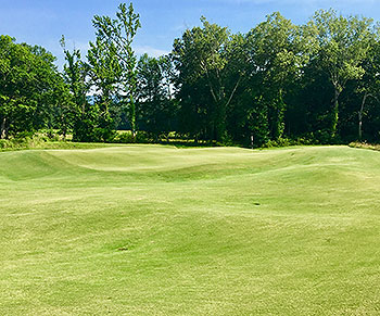 Sweetens Cove Golf Course - Photo by reviewer