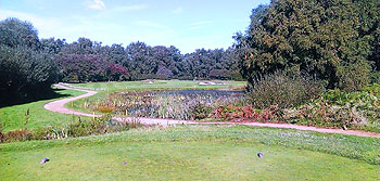 Thorpeness Golf Course - Photo by reviewer