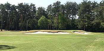 Tokyo Golf Course - Photo by reviewer