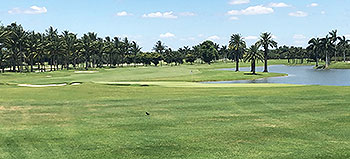 Trump National Doral (Blue Monster) Golf Course - Photo by reviewer
