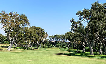 Real Valderrama Golf Course - Photo by reviewer