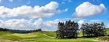Wainui Golf Course - Photo by reviewer