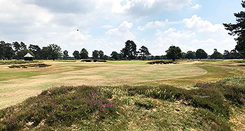 Walton Heath (New) Golf Course - Photo by reviewer