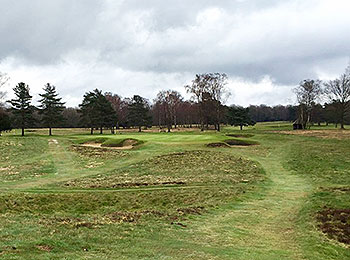 Walton Heath (Old) Golf Courses - Photo by reviewer