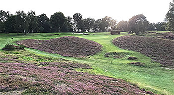 West Sussex Golf Course - Photo by reviewer