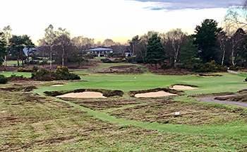 Woodbridge (Heath) Golf Course - Photo by reviewer