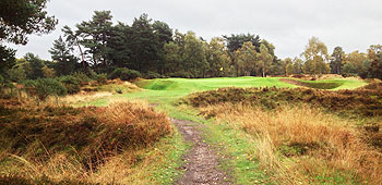 Woodhall Spa (Hotchkin) Golf Course - Photo by reviewer