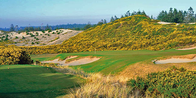 The favourite Redan Tom Doak has built is the 17th at Pacific Dunes