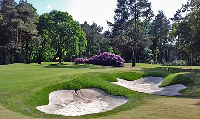 Four flourishing golf courses in Flanders