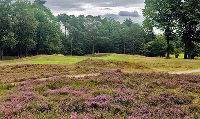 Top 100 Golf Courses revises its Benelux rankings 2020